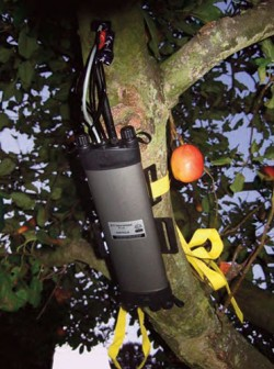 The First Production HFD8-100 in fruit tree