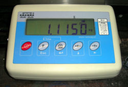 WSM1 Weigh Scale meter