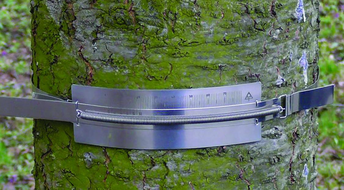 DBM80 Manual Band Dendrometer