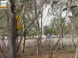 Equipment in Eucalypt Woodlot Hydrology project