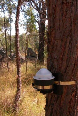 Continuous Data Logging Instruments For Drought Experiments
