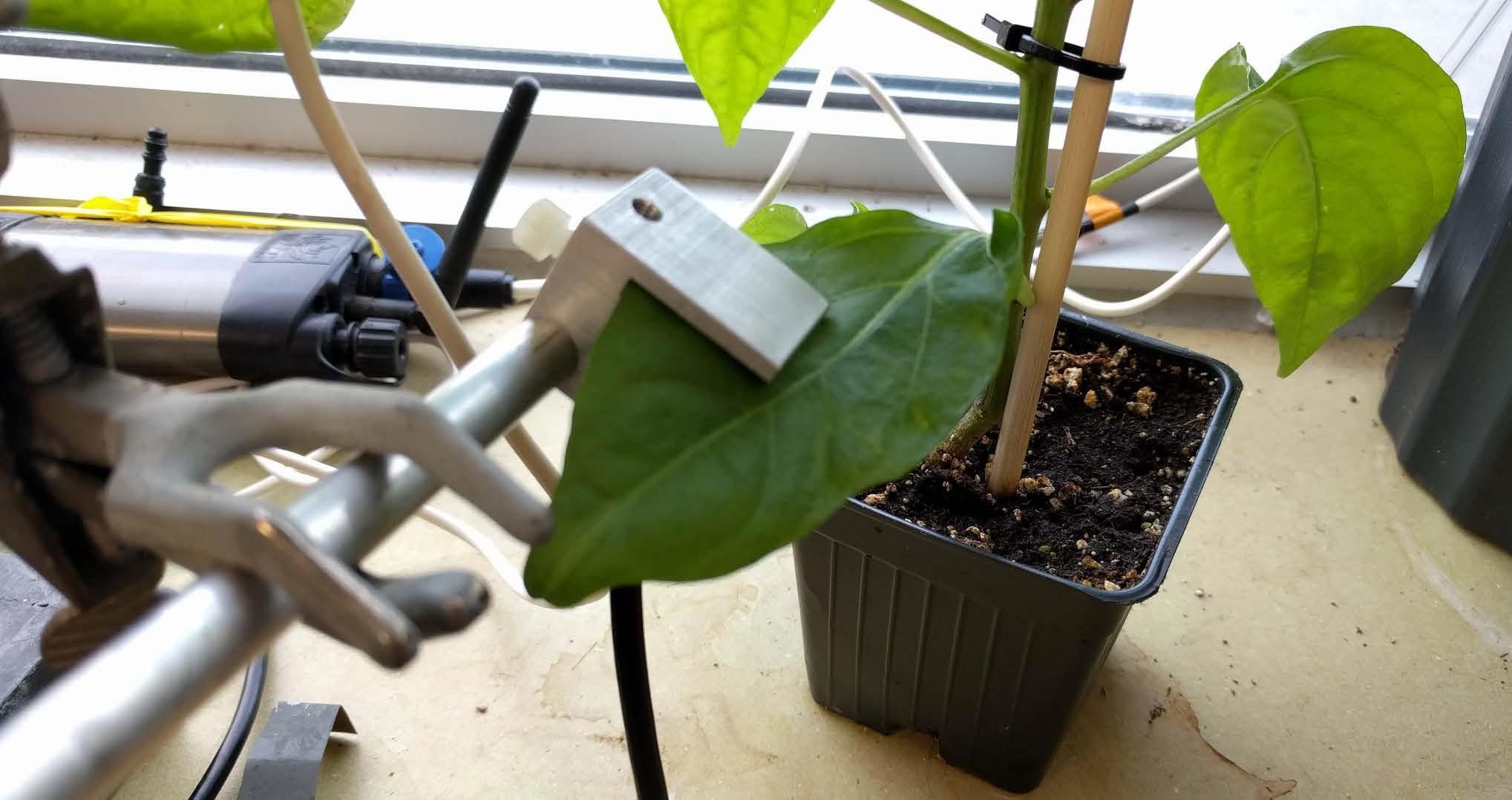 PSY1 Leaf Psychrometer