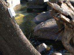 SDI-12 Node - Water Monitoring Applications